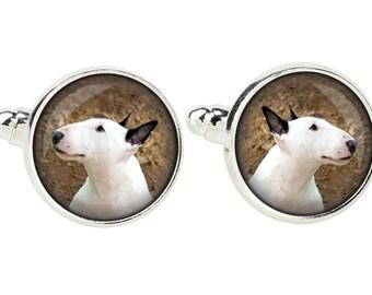 Bull Terrier. Cufflinks for dog lovers. Photo jewellery. Men's jewellery. Handmade