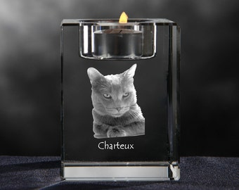 Chartreux, crystal candlestick with cat, souvenir, decoration, limited edition, Collection