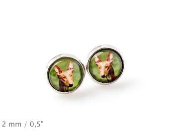 Pharaoh Hound. Pet in your ear. Earrings. Photojewelry. Handmade.