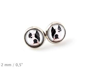 American Staffordshire Terrier. Pet in your ear. Earrings. Photojewelry. Handmade.