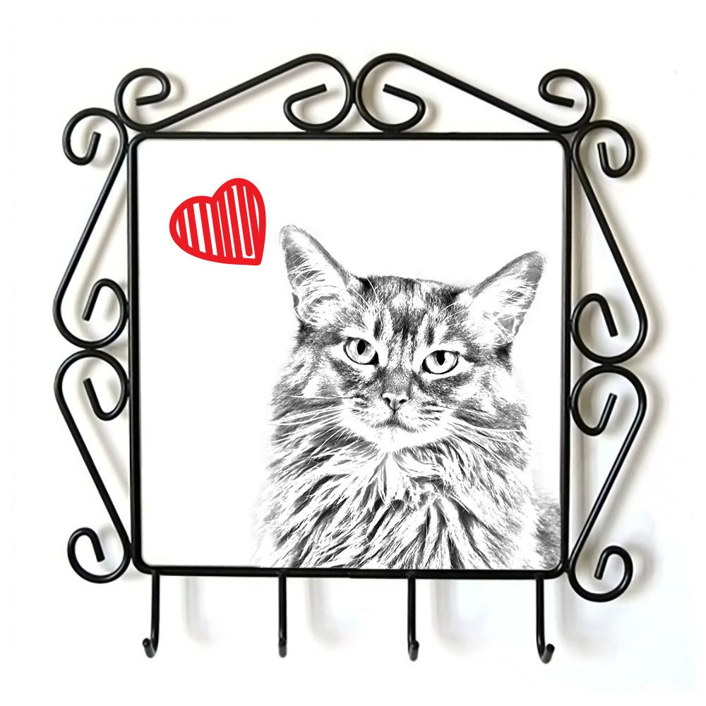 Somali cat- clothes hanger with an image of a cat  Collection  Cat with