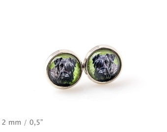 Cesky Terrier. Pet in your ear. Earrings. Photojewelry. Handmade.