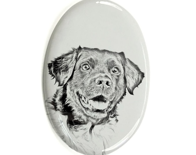 Featured listing image: Stabyhoun - Gravestone oval ceramic tile with an image of a dog.