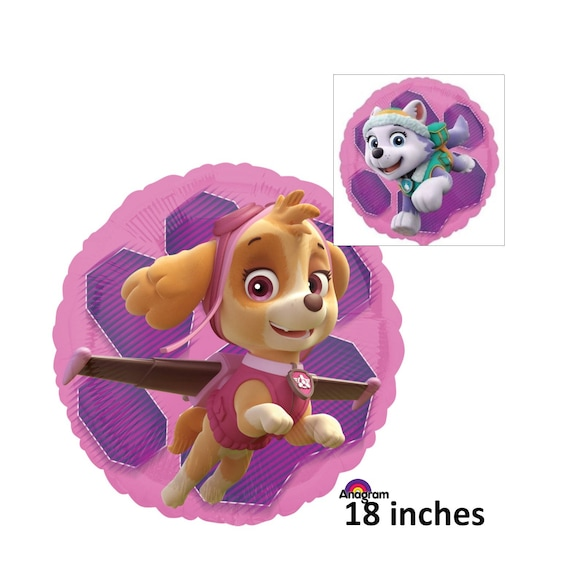 Paw Patrol Skye And Everest Balloon Childrens Birthday Decorations