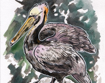Pelican Watercolor, A Nautical Delight