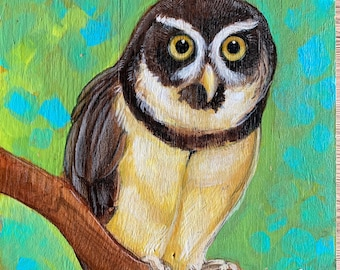 Spectacled Owl Original Art on Wood Panel
