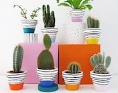Rainbow Set - 8 Mini Plant Pots