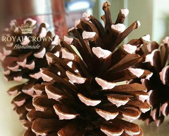 Pine Cones Winter Wedding Decorations Christmas Decor Etsy