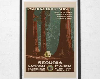 REDWOODS National Park Poster - Vintage Sequoia Travel Poster - Vintage California Travel Poster, Travel Print, Wall Art, Ribba Size