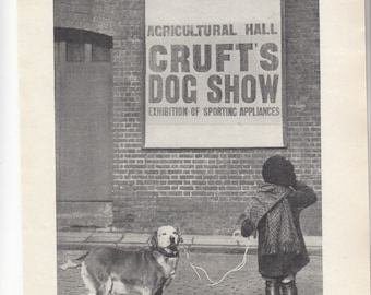 "Can I Compete? Girl W Dog Looking At Crufts Dog Show Sign,Then Largest In World,Dog Print1937 8"" X 10.5"""