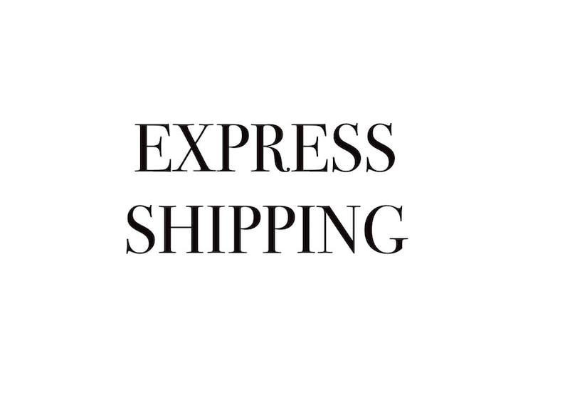 Express Shipping 1-3 business days Rapid and Safe Delivery  image 0