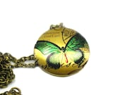 Green Butterfly Necklace, Charm Necklace, Long Bronze Necklace, Memory Locket, Butterfly Locket Necklace, Picture Locket Necklace