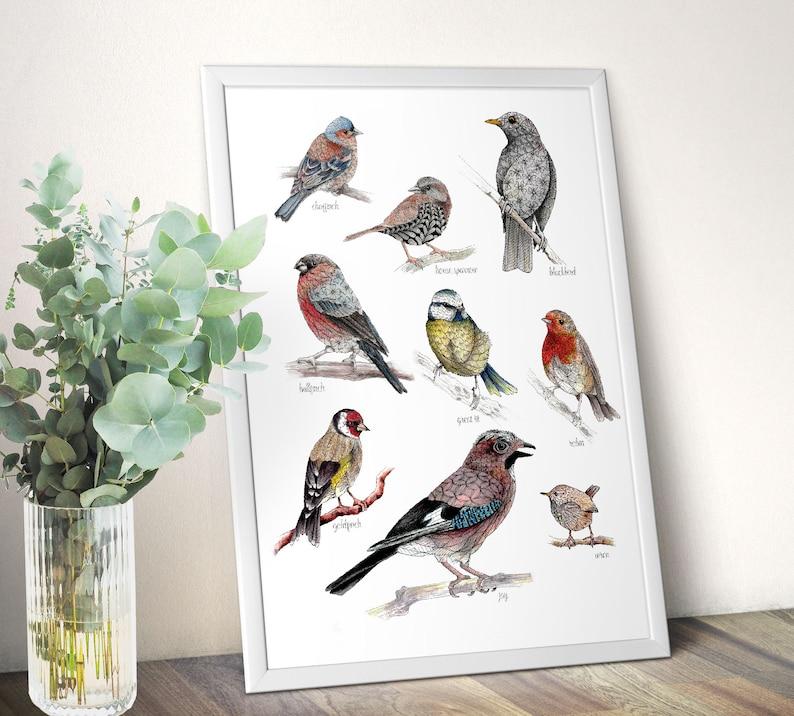 British garden birds poster wildlife wall art print nature image 0
