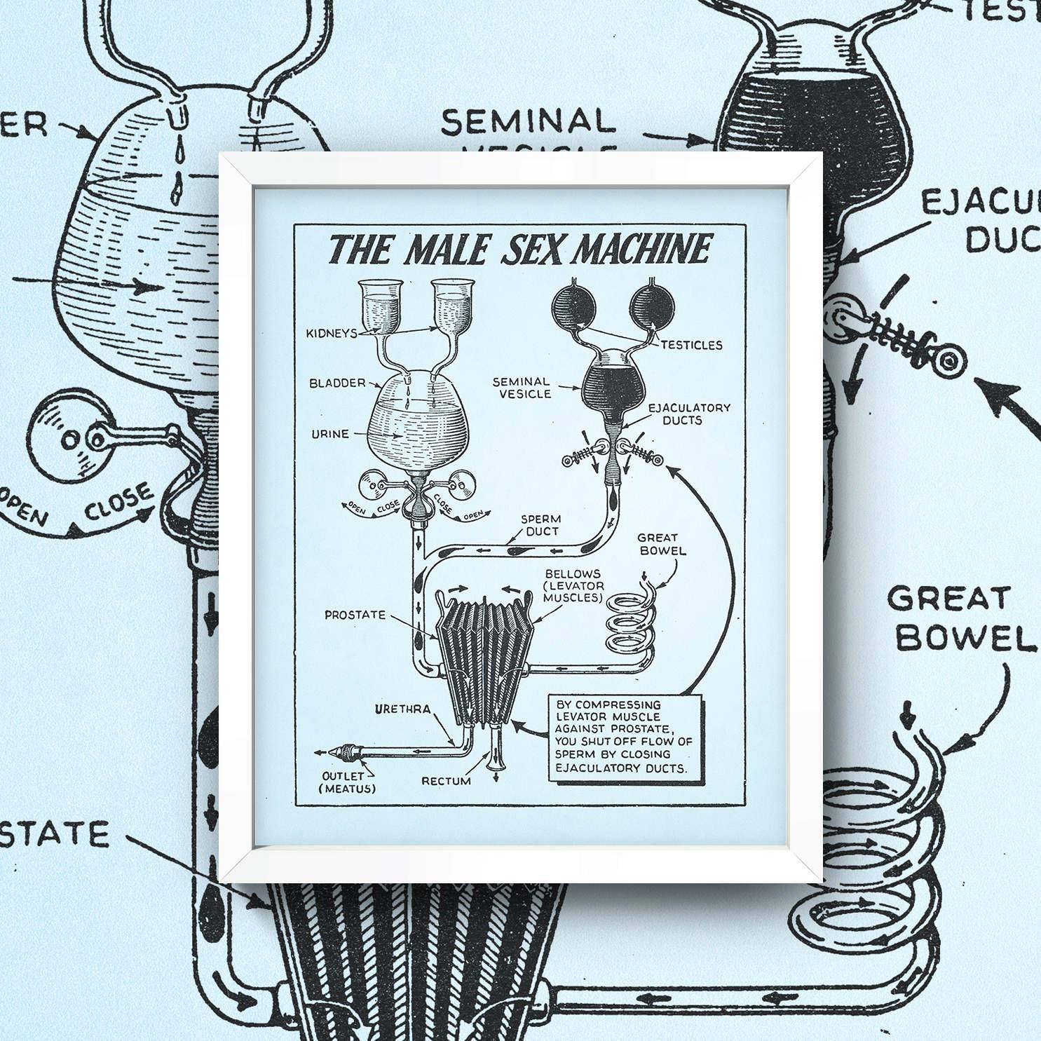 Sexo masculino máquina impresión 8 x 10 pared arte alta | Etsy