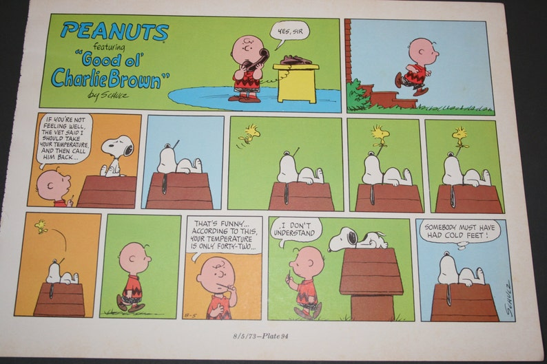 Snoopy Comic Charlie Brown Calls Vet Under The Weather Etsy