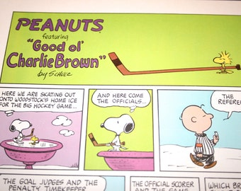 Snoopy Comic,  Ice Skating Comic, Charlie Brown, Ice Hockey, Ice Rink, Peanuts Comic Strip, Retro,  Charles M Schulz, Frame, Wall Decor