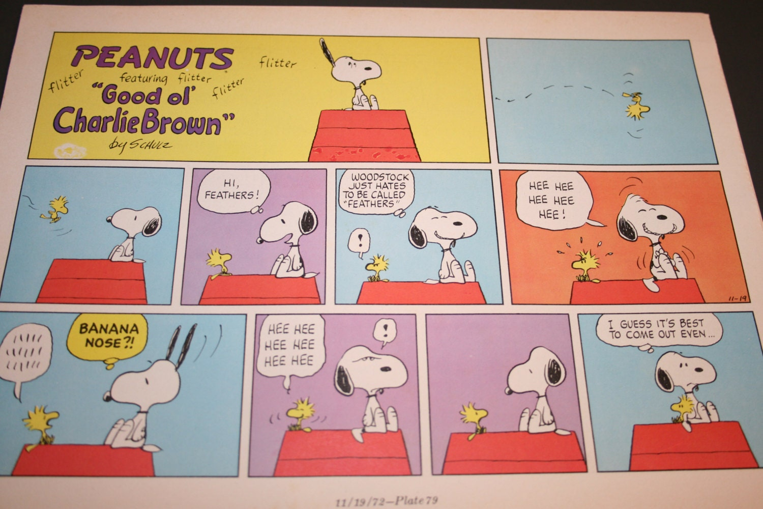 Snoopy Doghouse Name Calling Bullying Woodstock Vintage