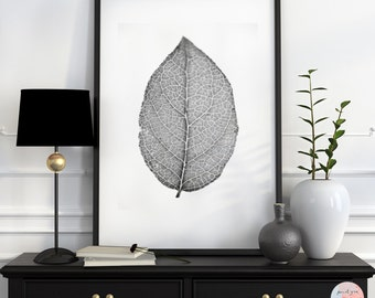Leaf, Minimalistic, Fine art photography, Black /White Photography, Macro