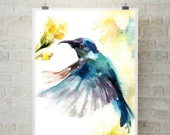 Blue hummingbird art print, bird print, bird watercolor painting art, bird wall art print, giclee print of hummingbird