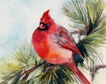 Northern Cardinal Bird Art Print, red bird watercolor painting art, cardinal on pine green branch wall art print, bird art print