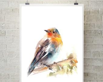 71340241a93d3 Robin bird art print, bird watercolor print, robin bird painting art, fine  art print of robin, bird wall art
