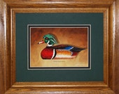 Wood Duck Framed Decoy Art Print finished in handsome oak frame ready to accent any wall or room in home or office
