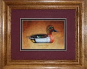 Green-wing Teal Framed Decoy Art Print finished in handsome oak frame ready to accent any wall or room in home or office