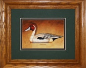 Pintail Framed Decoy Art Print finished in handsome oak frame ready to accent any wall or room in home or office