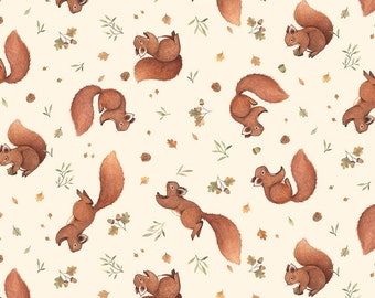 Little Fawn & Friends by Dear Stella -  DNS1907 Squirrels in Cream - 1/2 yd Increments or Fat Quarters, Cut Continuously