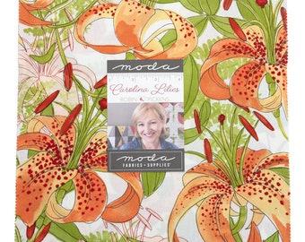 "Carolina Lilies by Robin Pickens for Moda -  10"" Layer Cake - Precut 10"" x 10"" Squares - 42 pieces"