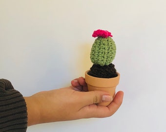 """Mini 3"""" cactus, miniature crocheted cactus, mini cacti, amigurumi , cactus toy, succulent lover gift , teachers gift, cactus with flower"""