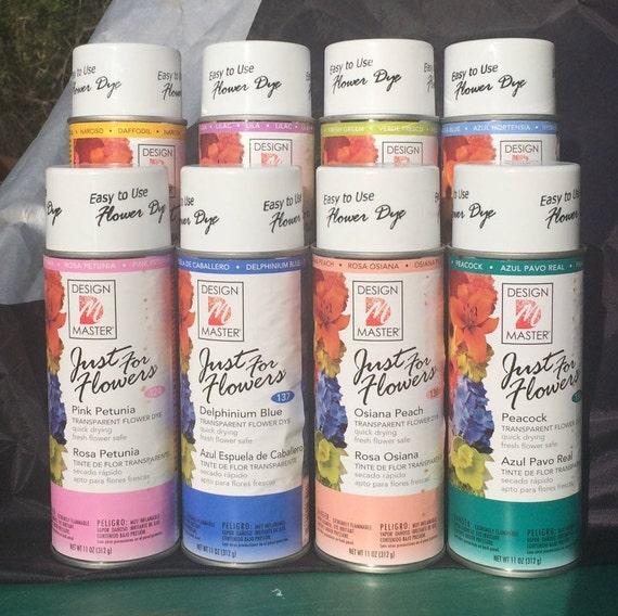 Design master floral spray paint fresh dried silk transparant etsy image 0 mightylinksfo