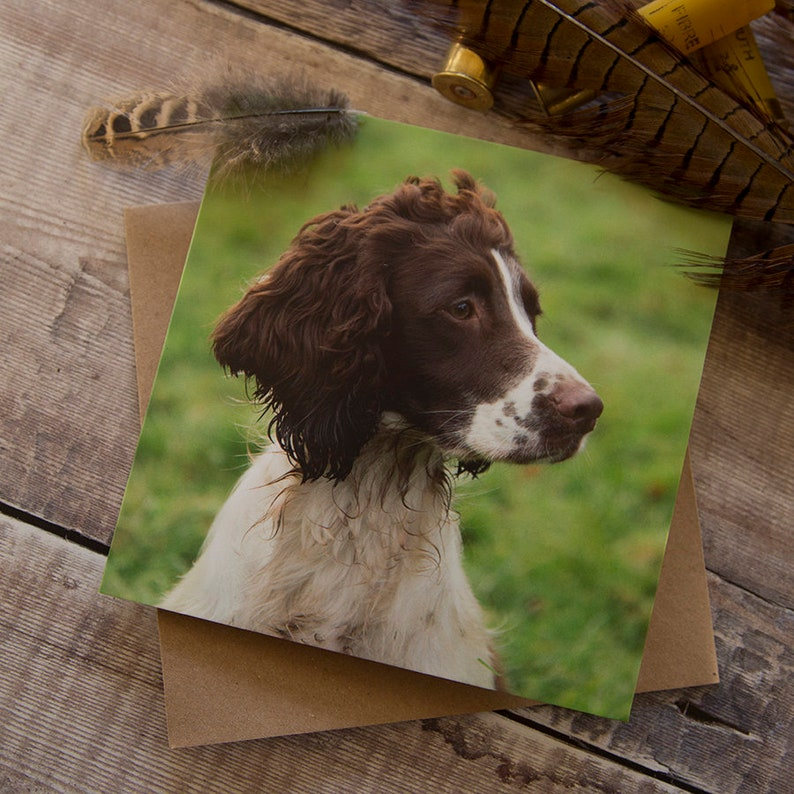 English Springer Spaniel Dog A5 Writing Note Paper With Envelopes Gift Handmade