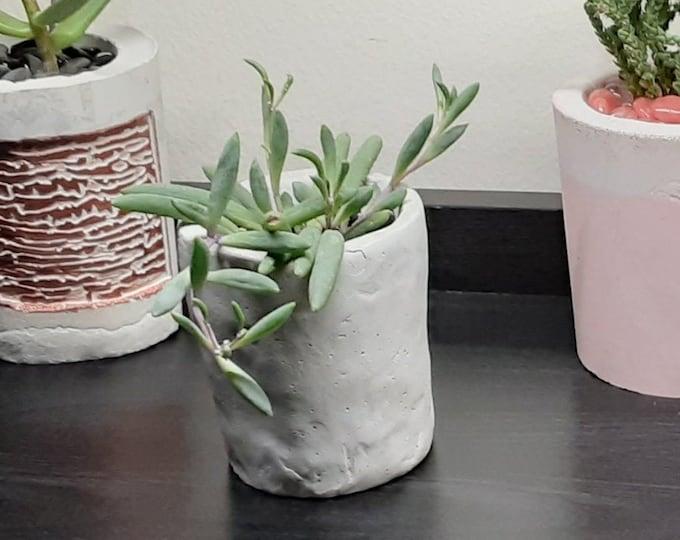 Petite 2 inch Cement Succulent Pot Handmade Planter