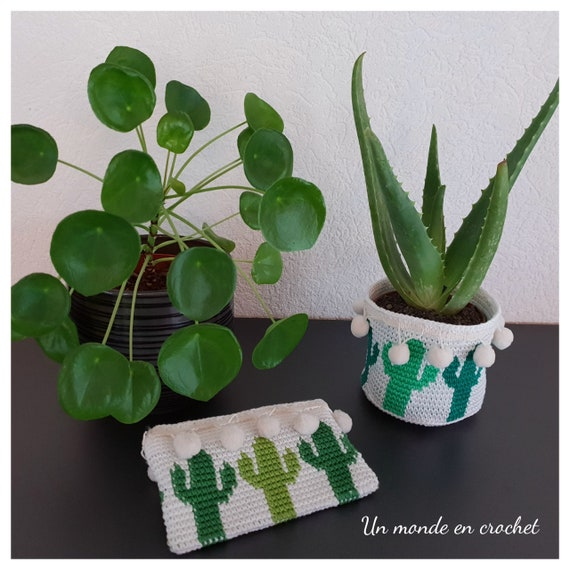 Small basket and cactus kit (PDF in French)