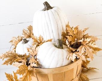 White Farmhouse pumpkins,fall porch decor,painted pumpkins,Halloween decor,Thanksgiving decor,Farmhouse home decor,autumn decor