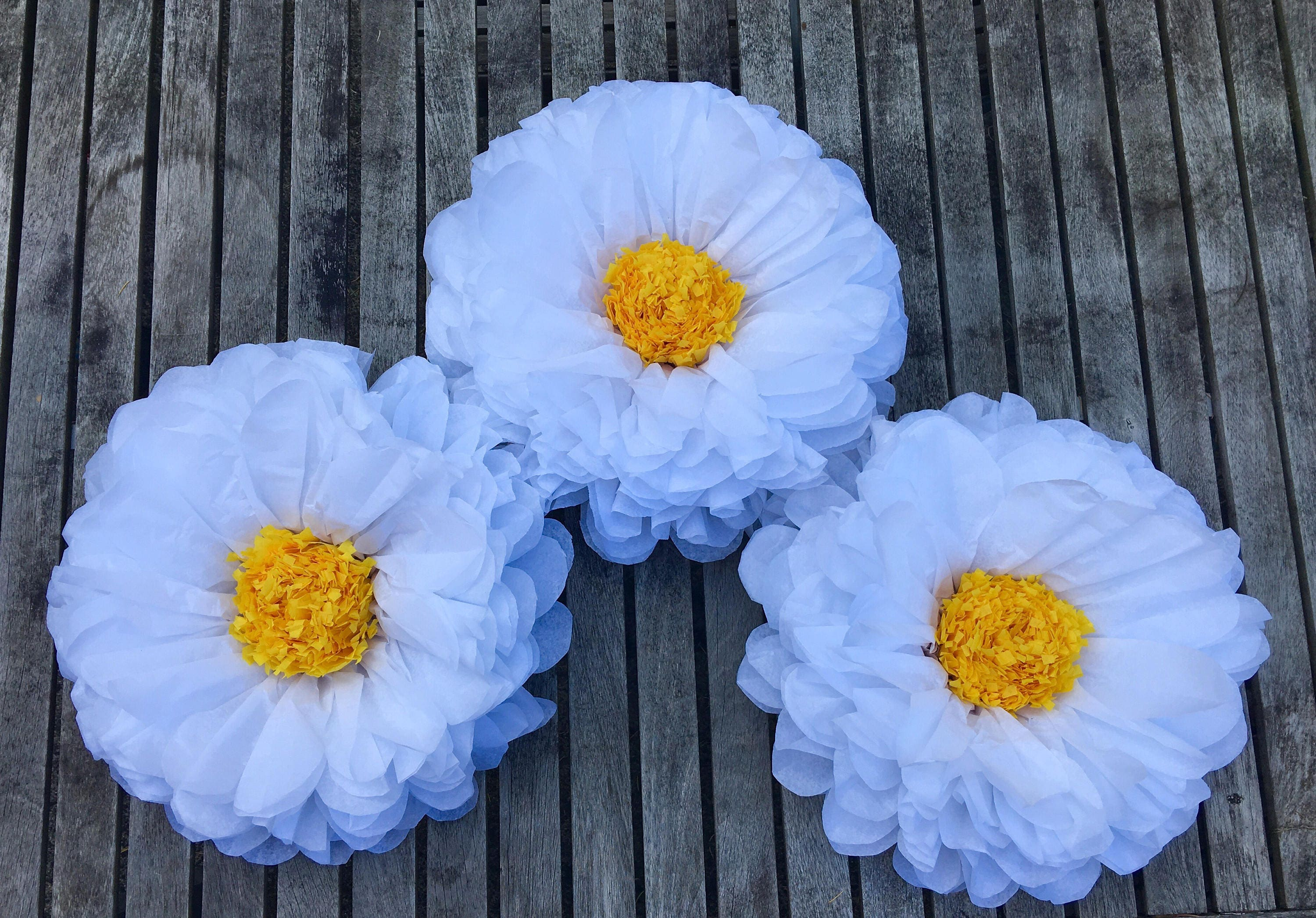 Large Paper Daisy 14 Large Tissue Paper Flowers Party Etsy