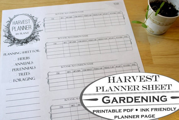 Harvest Planner Worksheet Printable Garden Page For