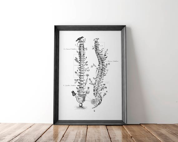 sc 1 st  Etsy & Chiropractor Gift Chiropractic Wall Art Chiropractic Posters