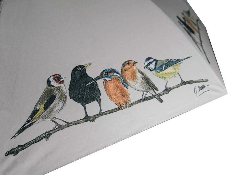 Birds In Row Country Walking Umbrella image 0