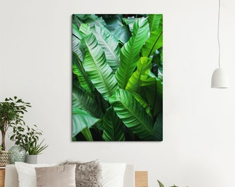 Leaves wall canvas for home decoration or plant shop decor, Plants print, Large canvas art, Relaxation wall art, 20x24 prints. UL124