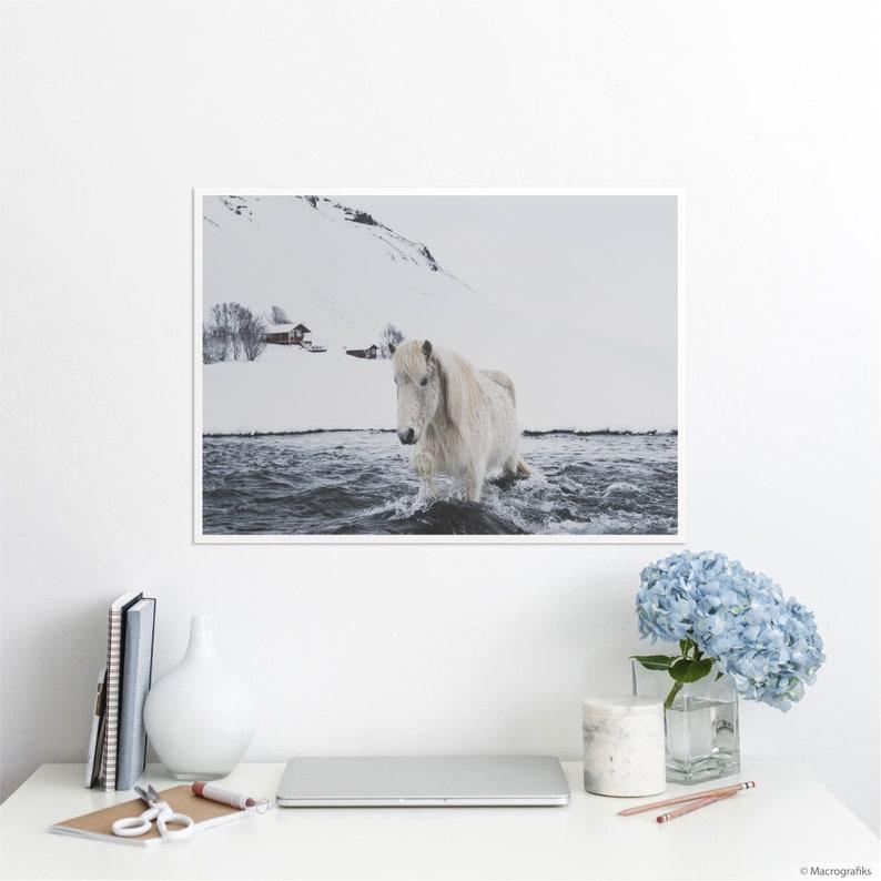 Scandinavian wall art Icelandic horse photography print on image 0