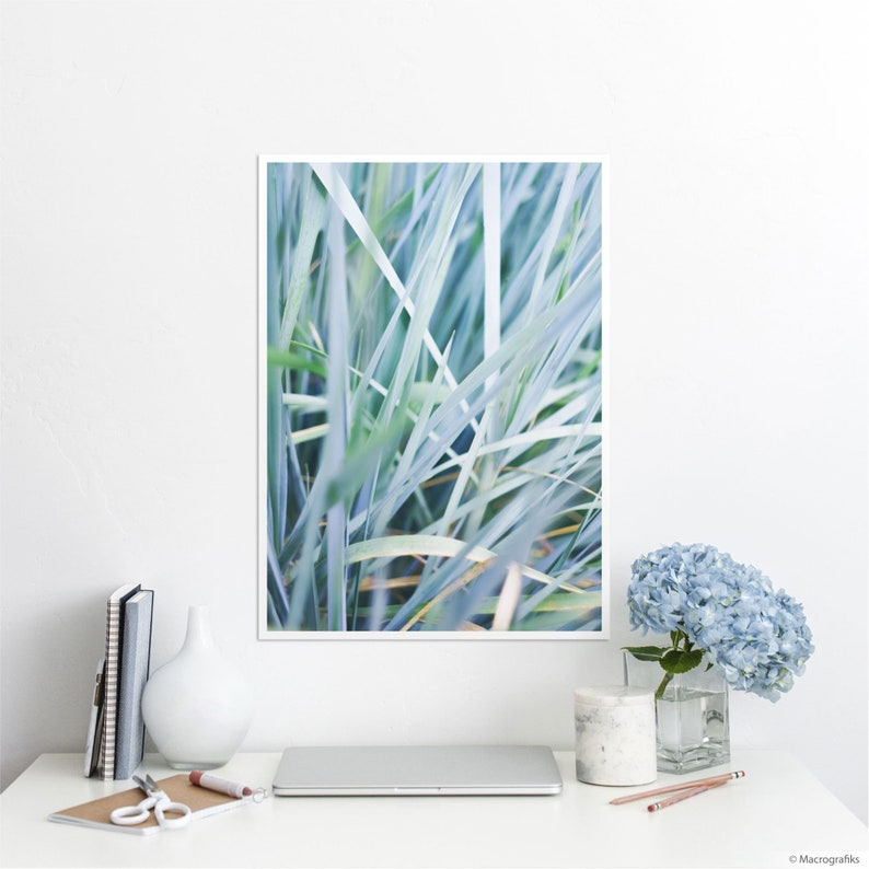 Blue Leaves wall print for home decor Nature prints on A2 | 23.4 x 16.5 inches