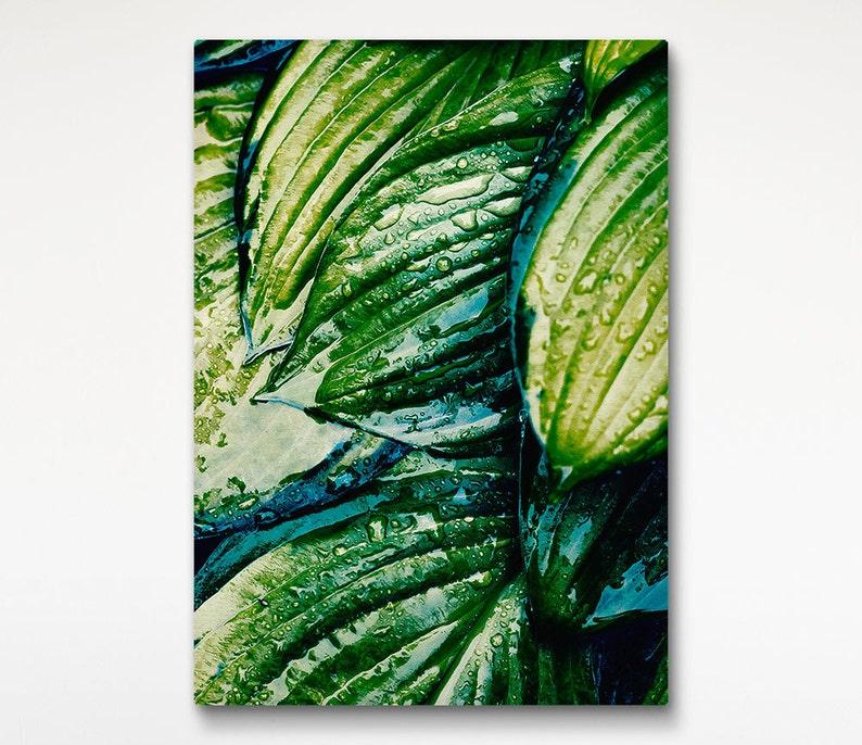 Tropical Rain Canvas Wet Leaves Photo Green Wall Art Nature image 0