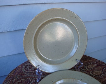 Mikasa Malibu Canyon Rimmed Luncheon Plates!