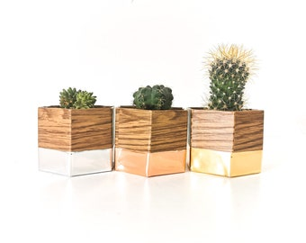 three pot caches MINI GEO oak and metal and cactus - interior decoration - plants - flower pot - Leewalia - green lovers - nature