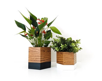 set of two geo oak, black and white pot caches - interior decoration - plants - flower pot - Leewalia - nature - green lovers