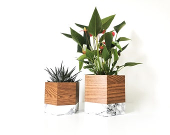 set of two geo oak and mabre pot caches - interior decoration - plants - flower pot - Leewalia - green lovers - nature
