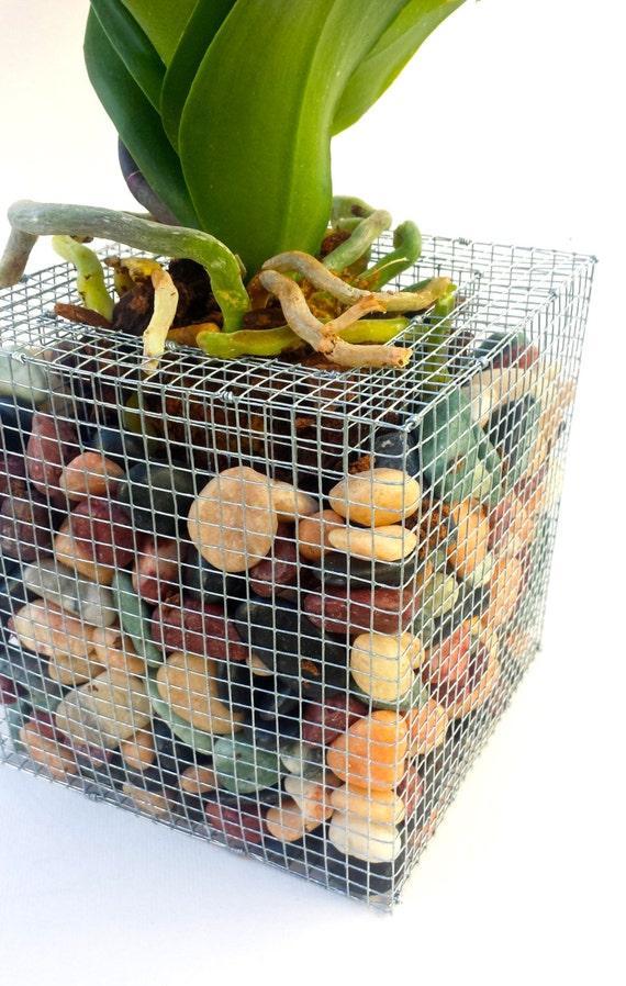 Plant Vase Diy Flower Pots