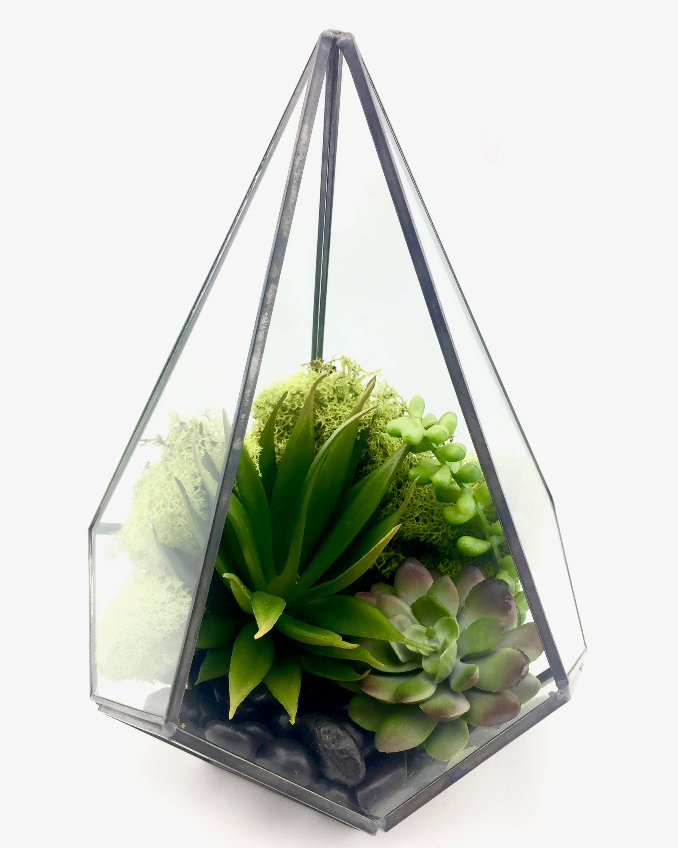 Artificial Succulent Terrarium Faux Terrarium Air Plant Etsy